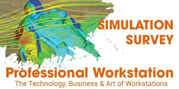 PW Simulation Survey 320x250